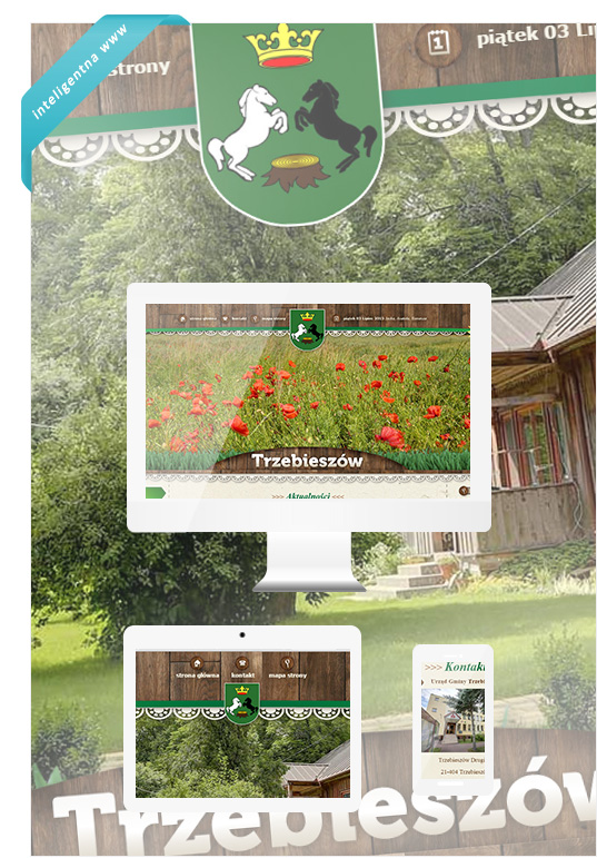 TRZEBIESZOW-strony-www